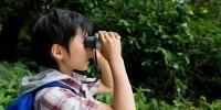 子どもと昆虫採集で一儲け?!夏休みは昆虫を探す旅へGo!