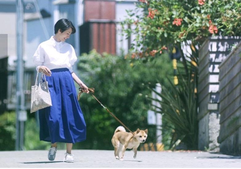 まるで映画!満島ひかりと鎌倉の風景に癒される東芝ライフスタイルムービー