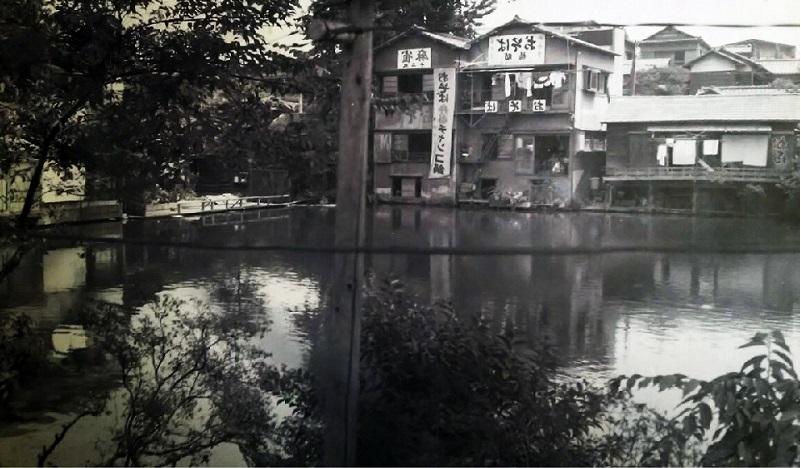 新宿十二社 熊野神社」が最強パ...