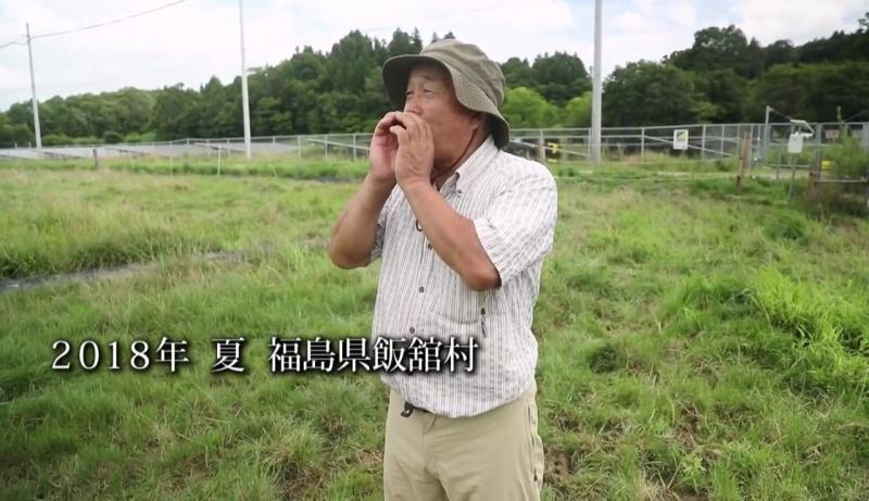 """復興へ向かう福島の畜産農家の""""今""""を追う動画「飯舘の牛と生きる。」が公開"""