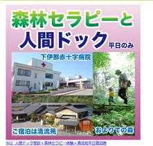 長野県松川市のふるさと納税